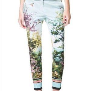 Zara Basic Japanese Garden Skinny Ankle Pants